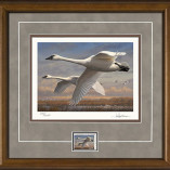 2016 Federal Duck Stamp Print Collector's Edition