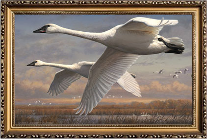 plymouth framery federal duck stamp print