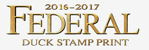 2016 Federal Duck Stamp Print